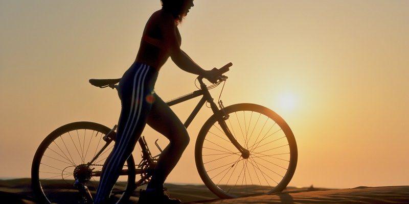Cykeltasker - praktiske til hverdag og cykelferie